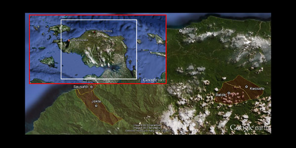 Deaths and Hunger in Kwoor District, Papua