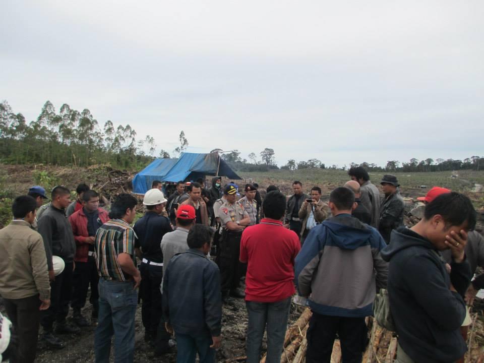 Kepolisian Humbang-Hasundutan Saksikan Penebangan Masih Terjadi di Area Hutan Kemenyan