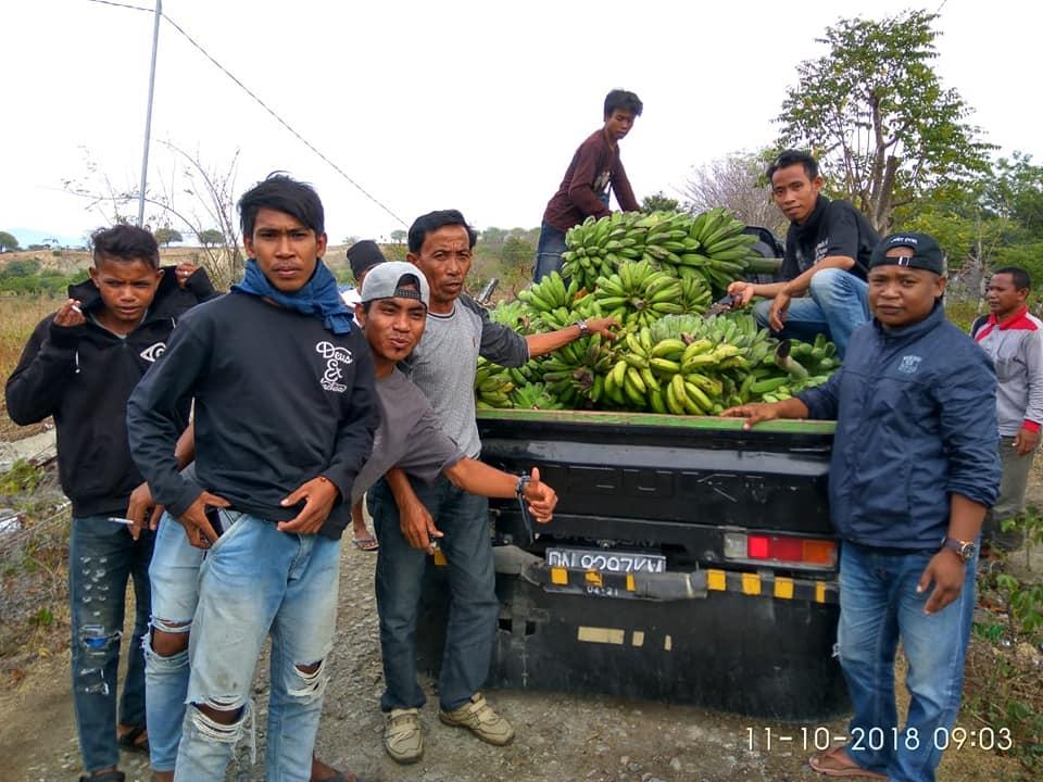 Samsudin Salurkan Pisang 1 Pick Up ke Palu dan Donggala