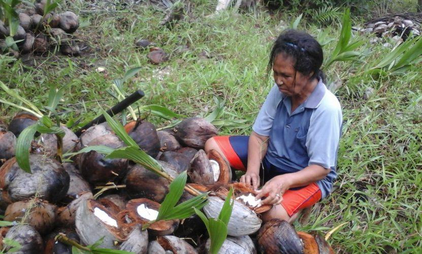 Policy Paper Pembentukan Peraturan Daerah Tentang Masyarakat Adat Di Kabupaten Kepulauan Aru Upaya Mewujudkan Pembangunan Daerah Yang Berkeadilan Aliansi Masyarakat Adat Nusantara