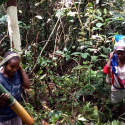 Rukka Sombolinggi: Akar Kekerasan Terbesar Perempuan Adat Terdapat pada Kebijakan Pembangunan